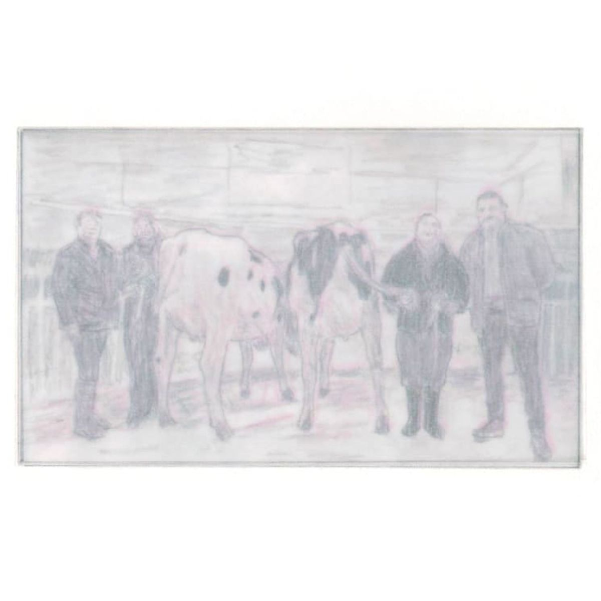 """""""Dairy cow takes red rosette"""" by Philip M. Jonathan, mnoermark (2 of 2)"""