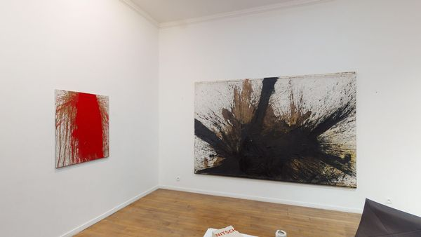 The Shape of Colour by Hermann Nitsch, Galerie RX (5 of 5)