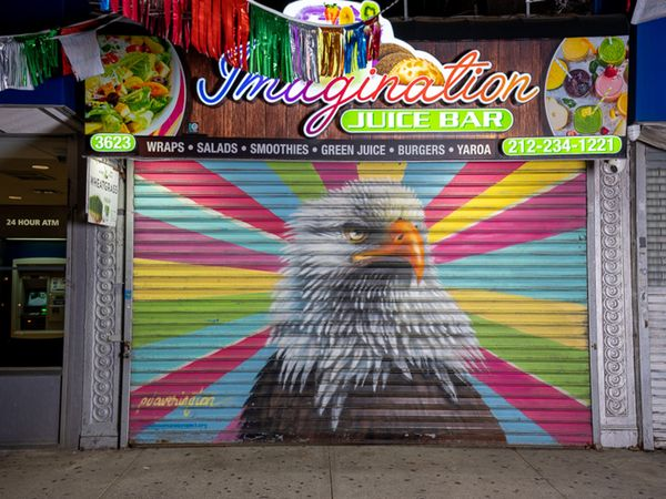 Audubon Mural Project: Photographs by Gail Albert Halaban