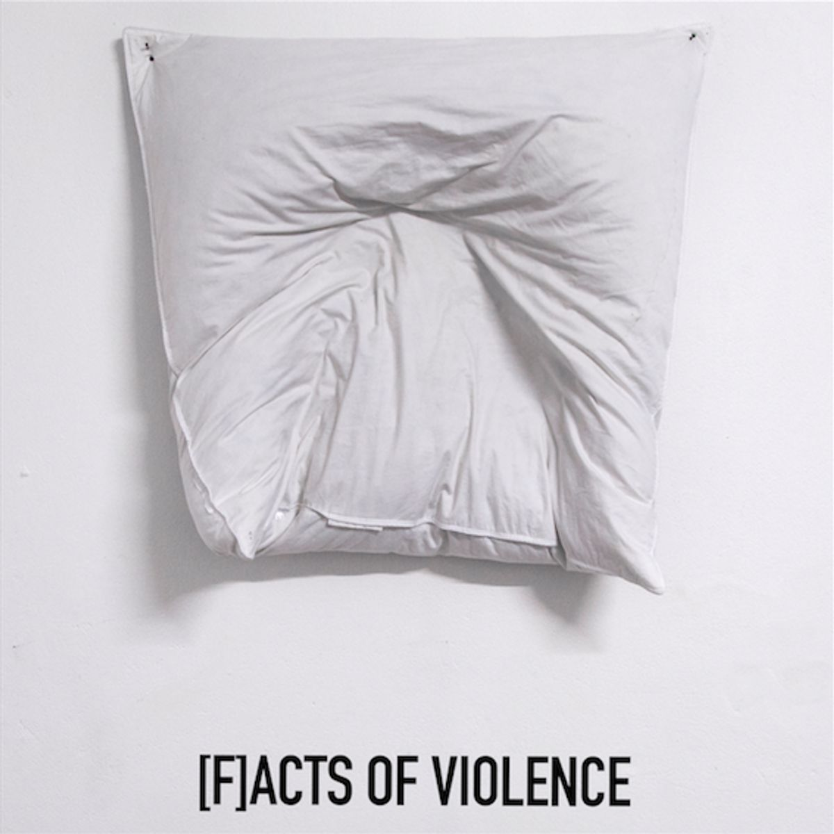 [F]acts of violence