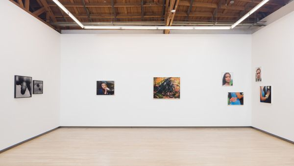 Close to Home (Group Exhibition), Shulamit Nazarian (3 of 4)