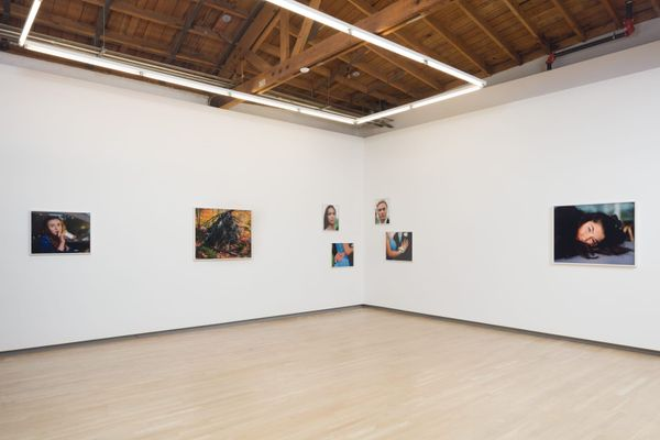 Close to Home (Group Exhibition), Shulamit Nazarian (4 of 4)