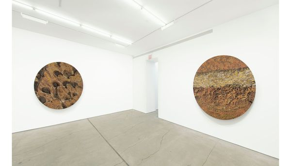 Beyond the Blue by Vibha Galhotra, Jack Shainman Gallery   West 24th Street (3 of 5)