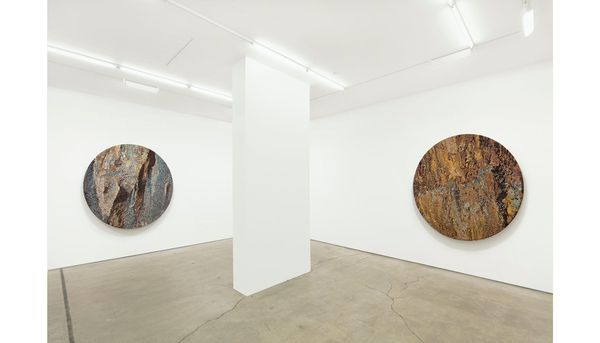 Beyond the Blue by Vibha Galhotra, Jack Shainman Gallery   West 24th Street (5 of 5)