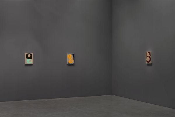 Recent Paintings by Albrecht Schnider, Galerie Thomas Schulte (7 of 10)