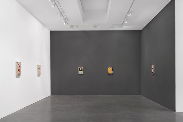 Recent Paintings by Albrecht Schnider, Galerie Thomas Schulte (8 of 10)