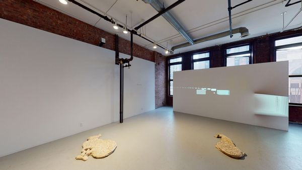 Electric Forest (Bowery) (Group Exhibition), Simone Subal Gallery (3 of 4)
