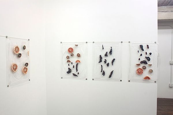 A Case for Violence to Reduce Suffering by Ryan Kitson, Greenpoint Terminal Gallery (6 of 6)