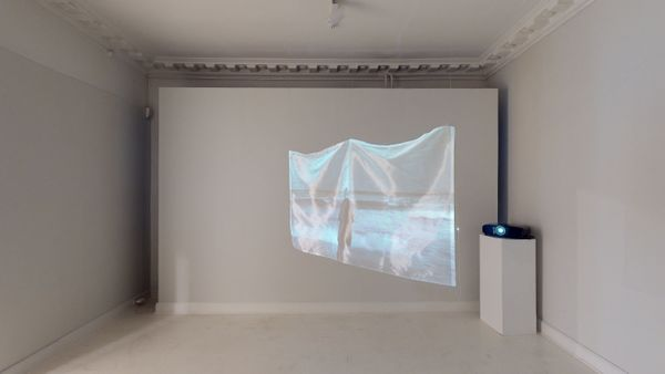 The Avantgarde doesn't give up by Elina Brotherus, Martin Asbæk Gallery (4 of 6)