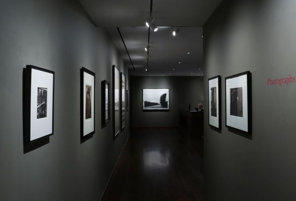 PHOTOGRAPHS FROM THE COLLECTION