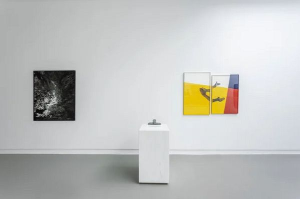 New reproductions (Group Exhibition), Annet Gelink Gallery (6 of 6)