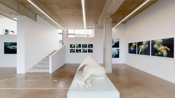 Nude - Arising From The Ground by Mariken Wessels , The Ravestijn Gallery