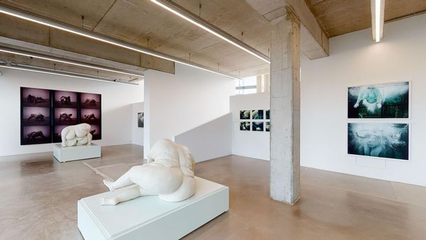 Nude - Arising From The Ground by Mariken Wessels , The Ravestijn Gallery (7 of 8)