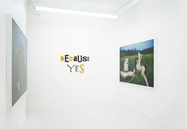 Dog days (Group Exhibition), LAUNCH F18