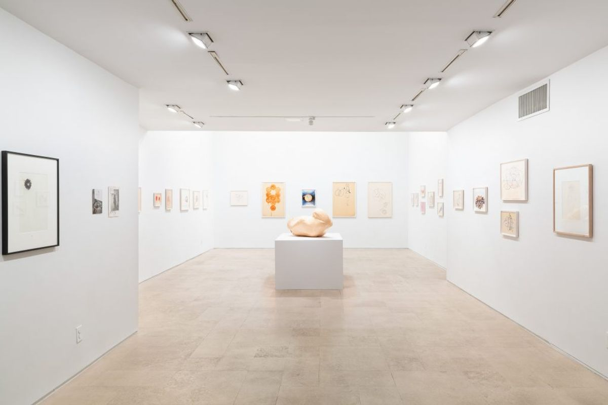 Bouboulina with Works on Paper (1985 – 2017)