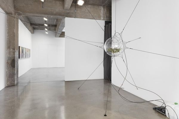 Songs in the Dark (Group Exhibition), Tanya Bonakdar Gallery | New York (5 of 5)