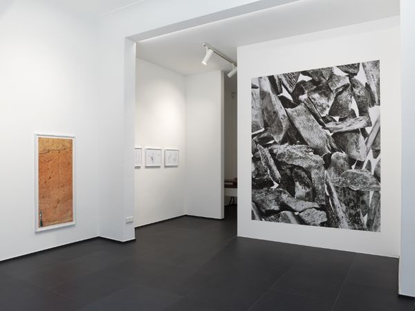 Solo exhibition by Peter Piller, Galerie Gisela Capitain (3 of 3)