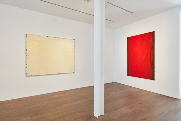 between the forceps and the stone (Group Exhibition), Rosenfeld Porcini (4 of 9)