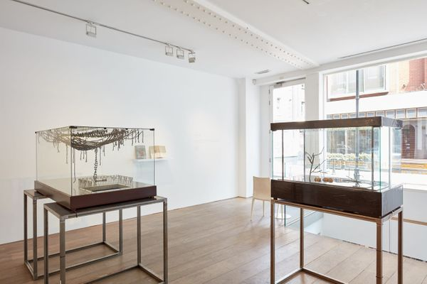 between the forceps and the stone (Group Exhibition), Rosenfeld Porcini (6 of 9)