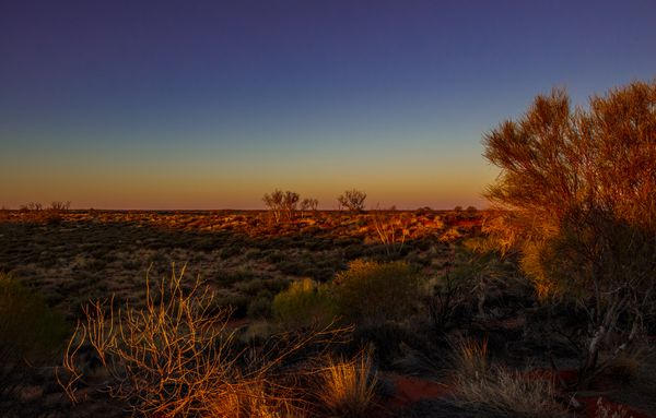Australiana Sunset Glow by Anthony Horth, Anthony Horth