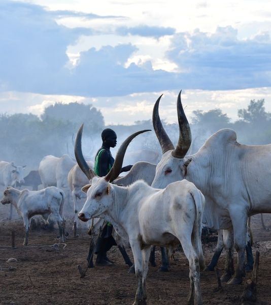 """Mundari in the Middle"" Horizontal"
