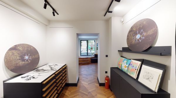 MADE IN LESHTEN - Vol. 2 (Group Exhibition), Little Bird Place (3 of 6)