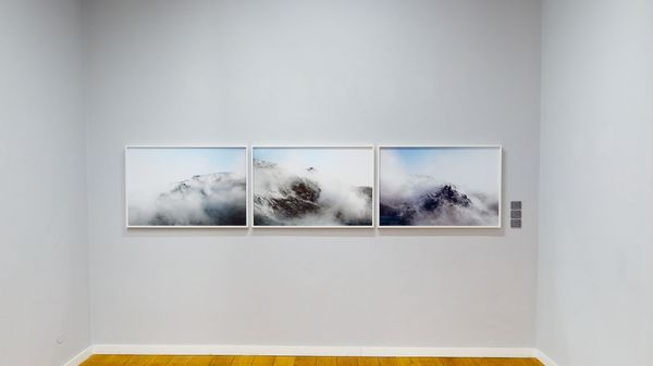Models of Nature in Contemporary Photography (Group Exhibition), Alfred Ehrhardt Stiftung (4 of 7)