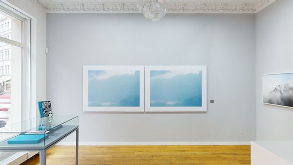 Models of Nature in Contemporary Photography (Group Exhibition), Alfred Ehrhardt Stiftung (2 of 7)