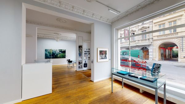 Models of Nature in Contemporary Photography (Group Exhibition), Alfred Ehrhardt Stiftung (3 of 7)