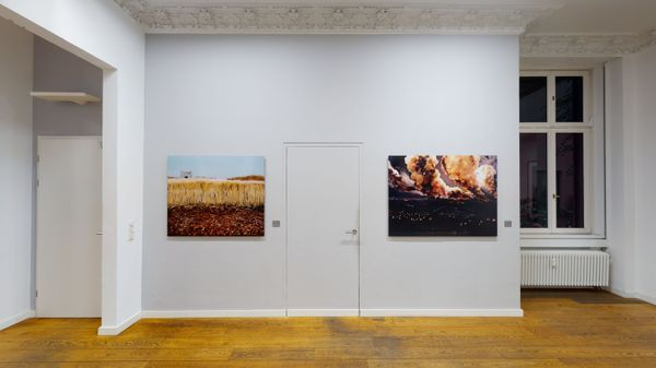 Models of Nature in Contemporary Photography (Group Exhibition), Alfred Ehrhardt Stiftung (6 of 7)