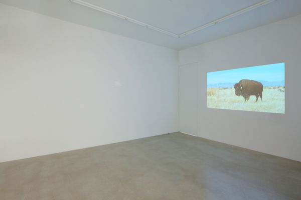 Borders (Group Exhibition), James Cohan (2 of 16)